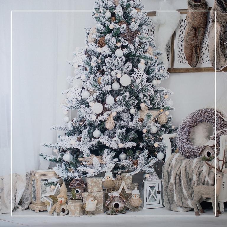Christmas Setups.2018 Christmas Mini Sessions Lorena Jean Photography